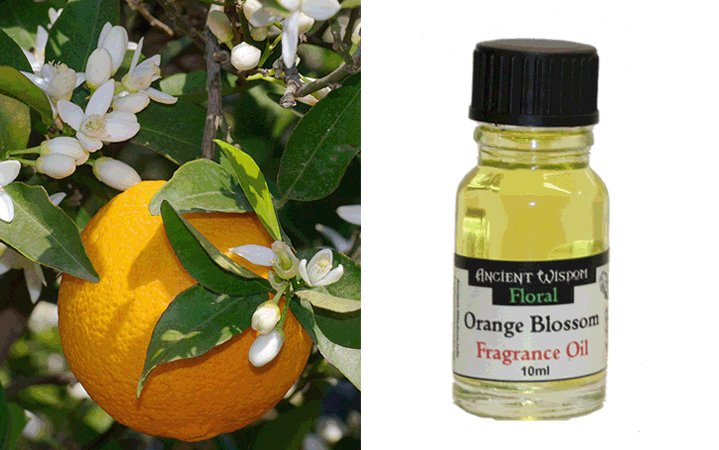 Orange Blossom 10ml