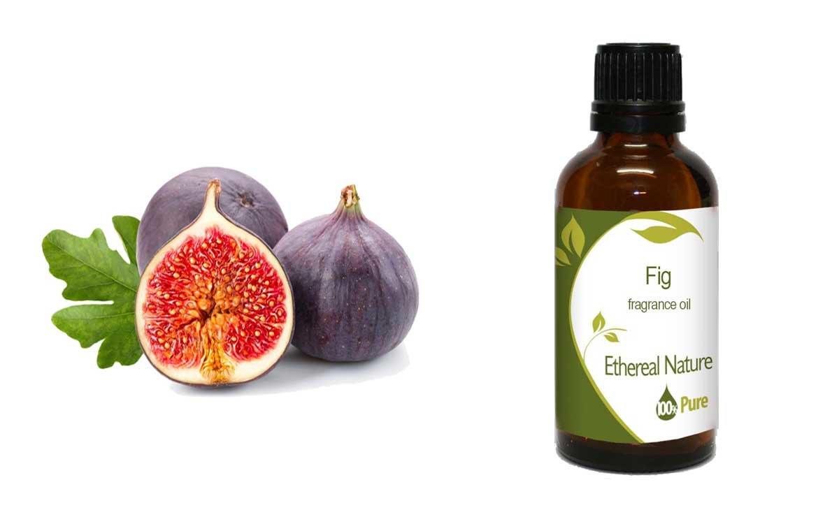 Fig (Σύκο) 100ml