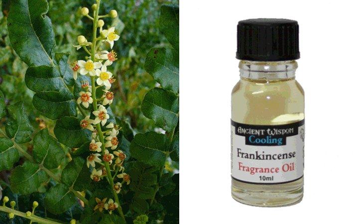 Frankincense (Λιβάνι) 10ml