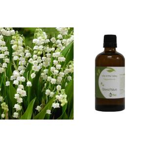 Lilly of the Valley (Κρίνος) 100ml