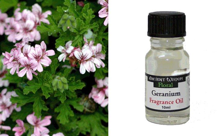 Geranium (Γεράνι) 10ml