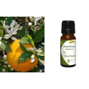 Orange Blossom (AE)