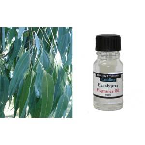 Eucalyptus (Ευκάλυπτος)