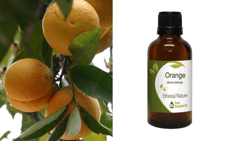 Πορτοκάλι 50ml