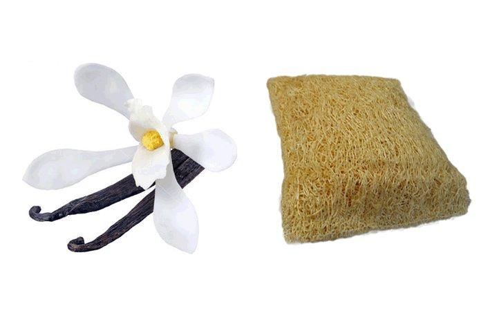 Loofah Σαπούνι Vanilla