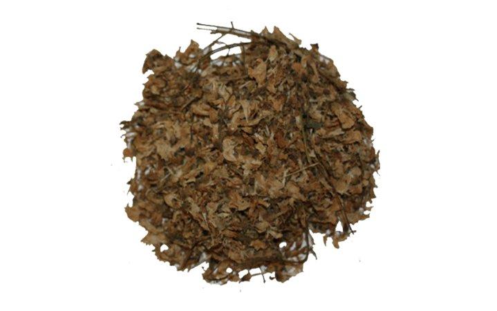 Ακακία (Μιμόζα) βότανο