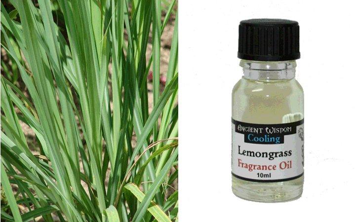 Lemongrass (Λεμονόχορτο)